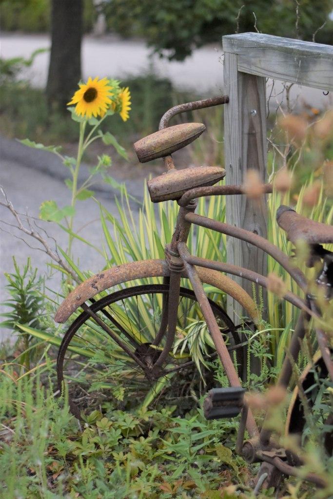Image of Beautiful Old Bike