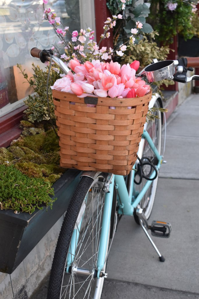 Image of Blue Beach Cruiser with Basket