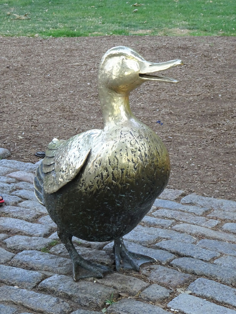 Image of Boston Mama Duck
